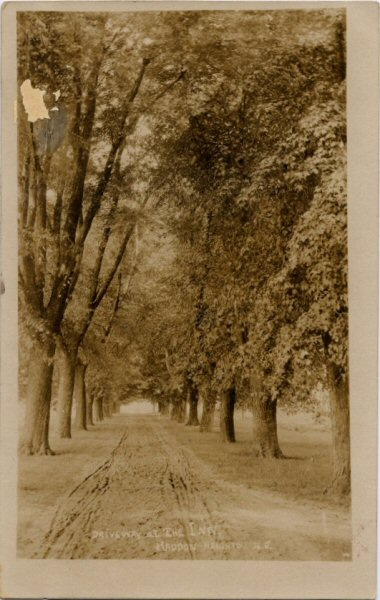 haddonheightsinndriveway-1905q