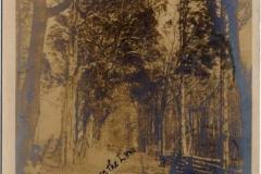 haddonheightsinndriveway-1906